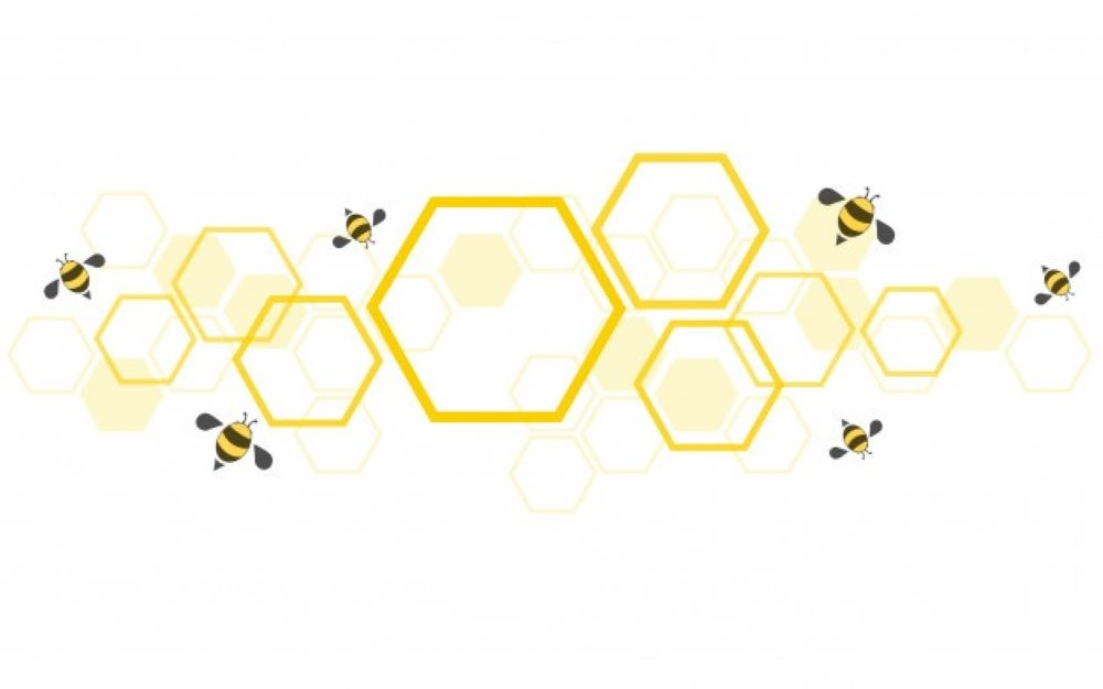 bee hive background 77417 528 1
