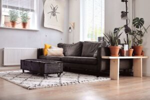 Apply These 6 Practical Techniques To Improve To Decorate The Living Room With Plants