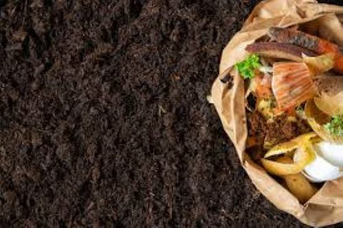 Simple & Practical Tips To Make Organic Fertilizer From Kitchen Waste
